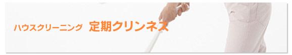 ハウスクリーニング 札幌でお探しの方へ「定期クリンネス」のご提案!!有限会社フローリッシュ